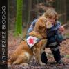 Ειδικό διαιτολόγιο για σκυλί εργασίας αθλητικό σκυλί